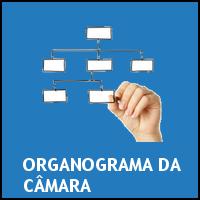 ORGANOGRAMA DA CAMARA