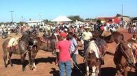Juíza da 2º Vara regulamenta  participação de menores no desfile e Expoju 2015